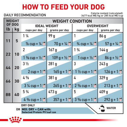Selected Protein Adult PV Dry Dog Food