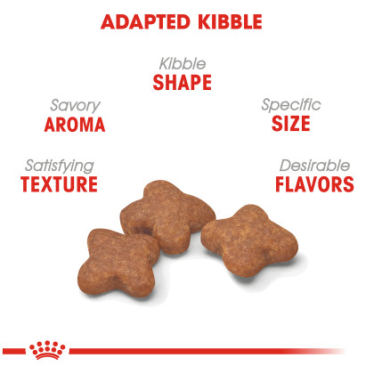 Small Adult 8+ Dry Dog Food