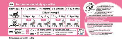 Kitten feeding guide