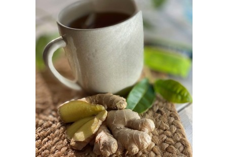 Ginger and tea leaves in front of up of Green Tea with Ginger plus Probiotics