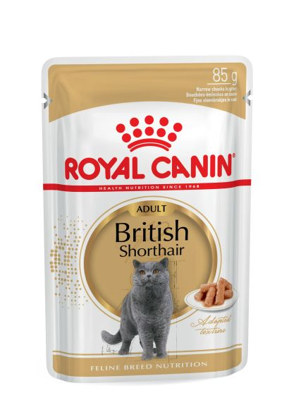 British Shorthair Adult (in gravy)