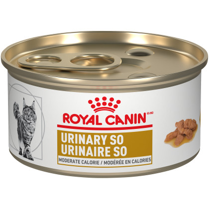 Royal Canin Veterinary Diet Feline Urinary SO Moderate Calorie Morsels In Gravy Canned Cat Food