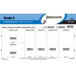 """Grade 5 Hex Cap Screws Assortment (3/4""""-10 Thread)"""