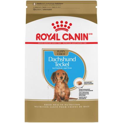 Dachshund Puppy Dry Dog Food