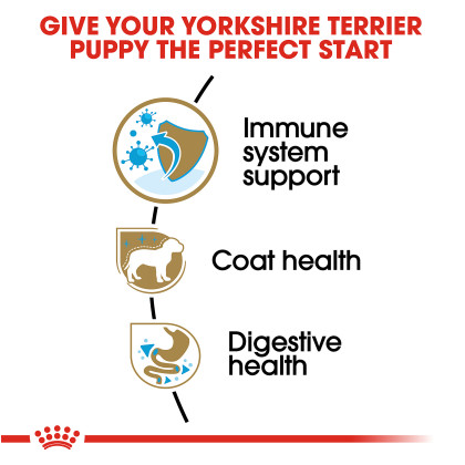 Yorkshire Terrier Puppy Dry Dog Food