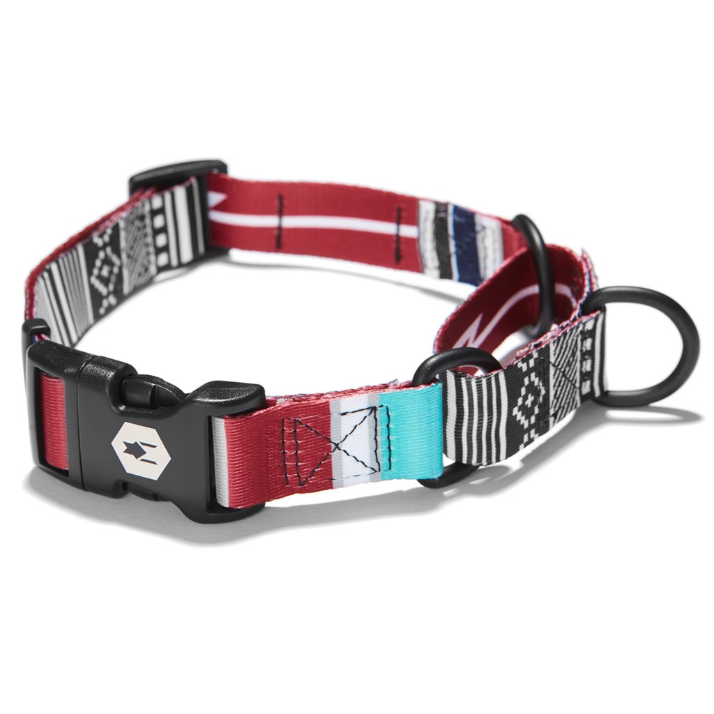 Wolfgang CultureShock Martingale Dog Collar