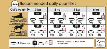 Persian feeding guide