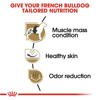 Royal Canin Breed Health Nutrition French Bulldog Adult Dry Dog Food