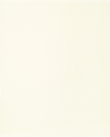 Bainbridge Grecian White 32