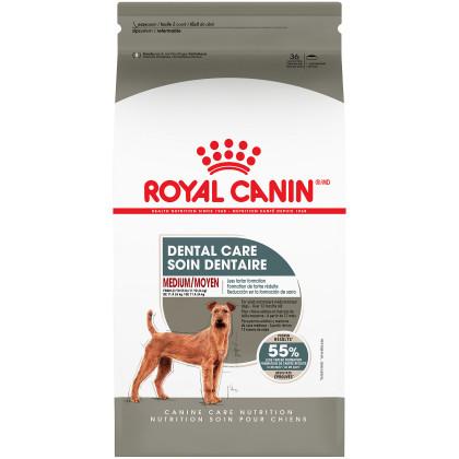 Medium Dental Care Dry Dog Food