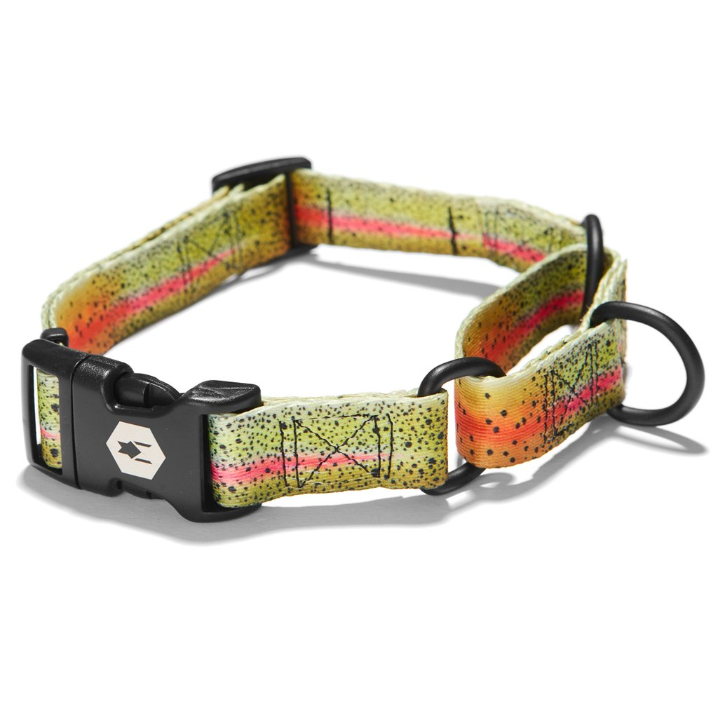 Wolfgang CutBow Martingale Dog Collar