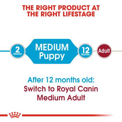 Medium Puppy Dry Dog Food