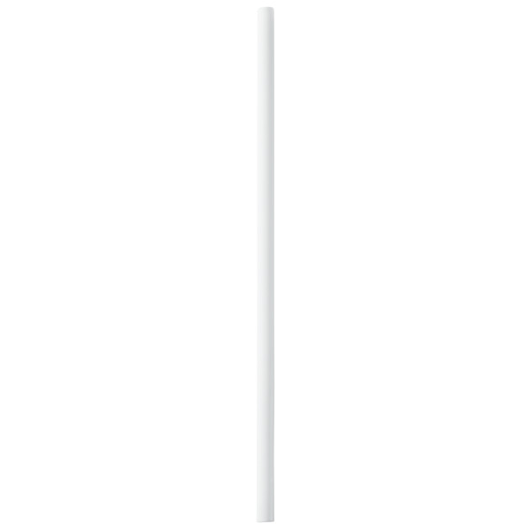 "White Plastic Treat Stick 4.5"" x 0.15"" dia. Decorating Tools"