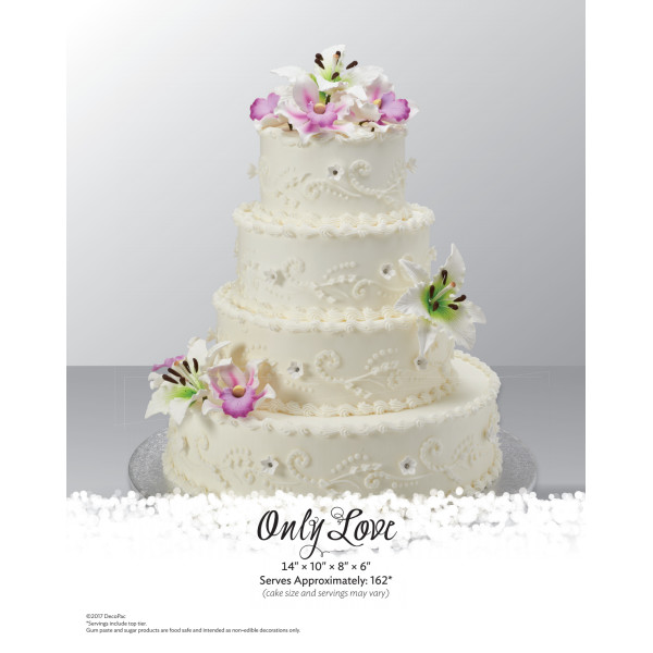 Only Love Wedding The Magic of Cakes® Page