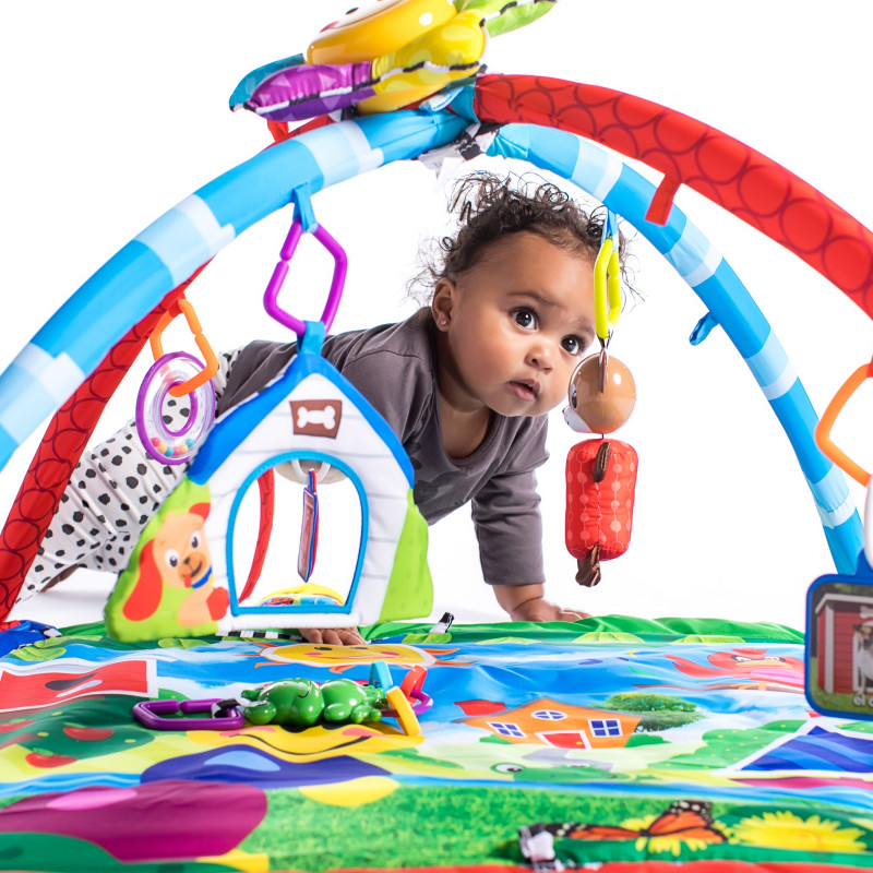 Caterpillar Amp Friends Play Gym Baby Einstein Kids2