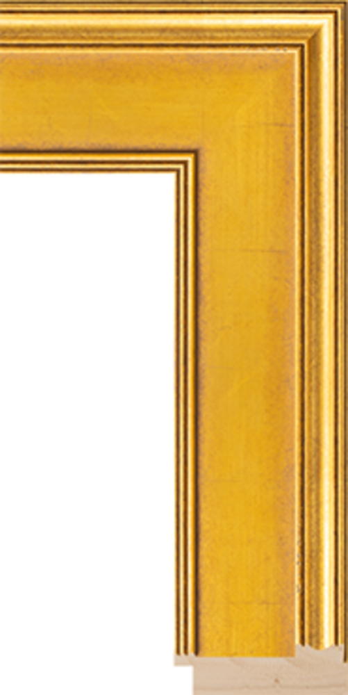 Hudson Gold 3