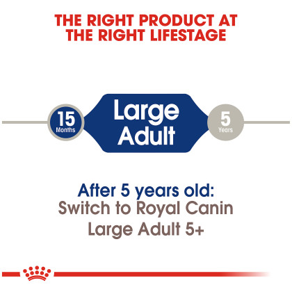 Royal Canin Size Health Nutrition Large Adult Dry Dog Food