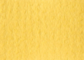 Arqadia Daffodil 32