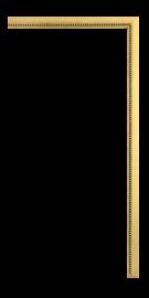 Fillets and Liners Fillet Gold 1/4
