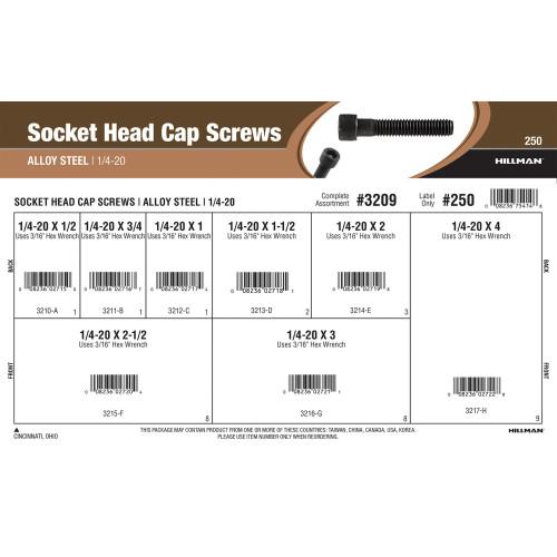 Socket-Head Cap Screws Assortment (1/4