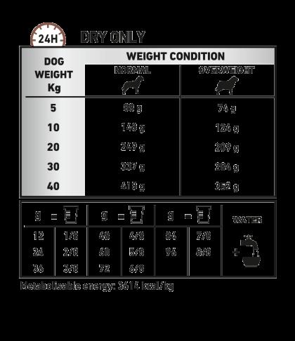 Gastrointestinal Moderate Calorie feeding guide