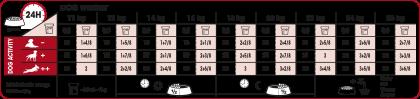 Medium Adult feeding guide
