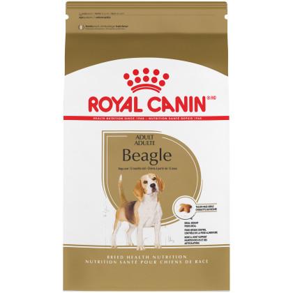 Beagle Adult Dry Dog Food
