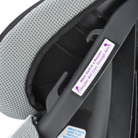 Chase 2-In-1 Booster Car Seat