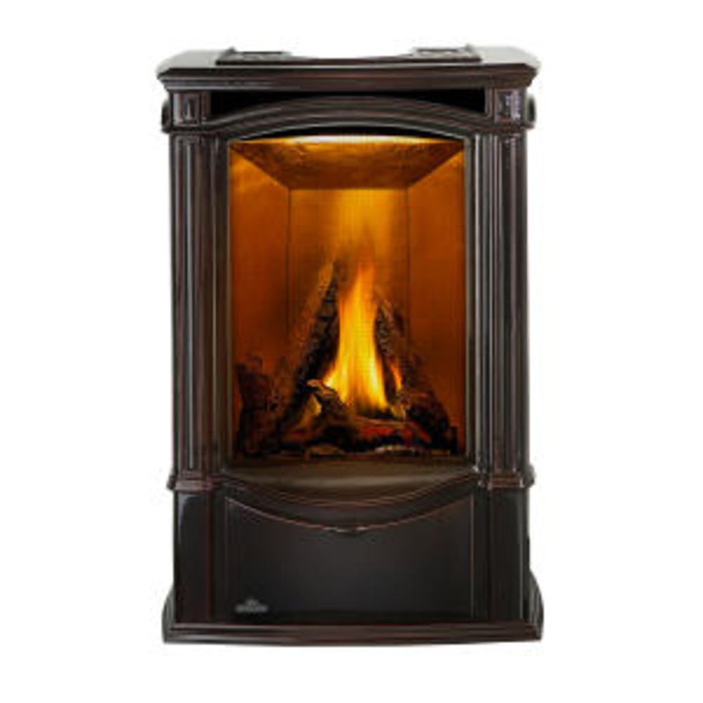 Castlemore™ Direct Vent Gas Stove
