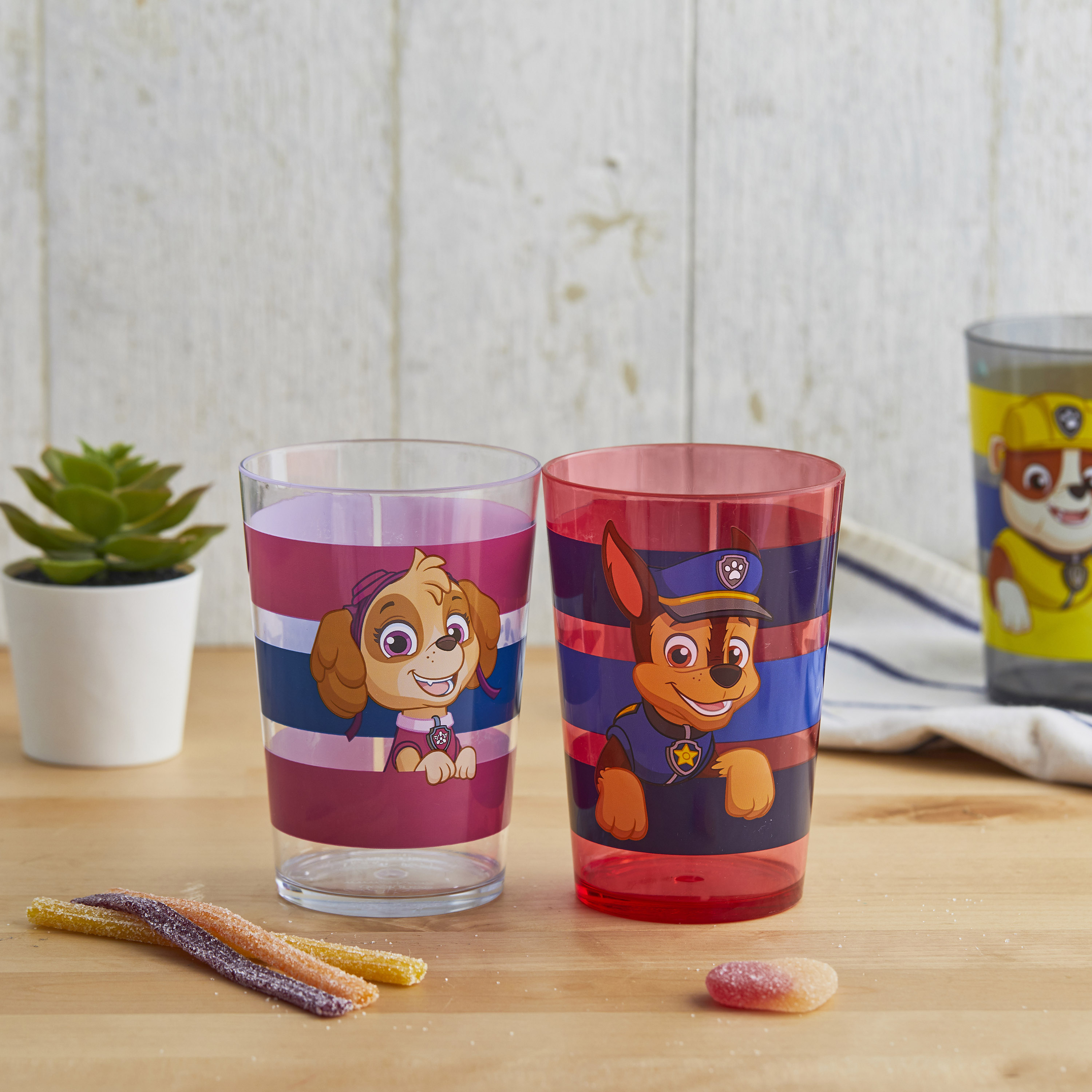 Paw Patrol 14.5 ounce Tumbler, Chase, Skye and Friends, 4-piece set slideshow image 4