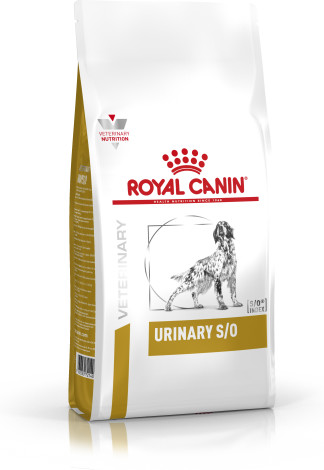 Canine Urinary SO
