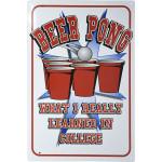 "Beer Pong Novelty Sign (12"" x 18"")"