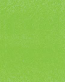 Bainbridge Cybergreen 32