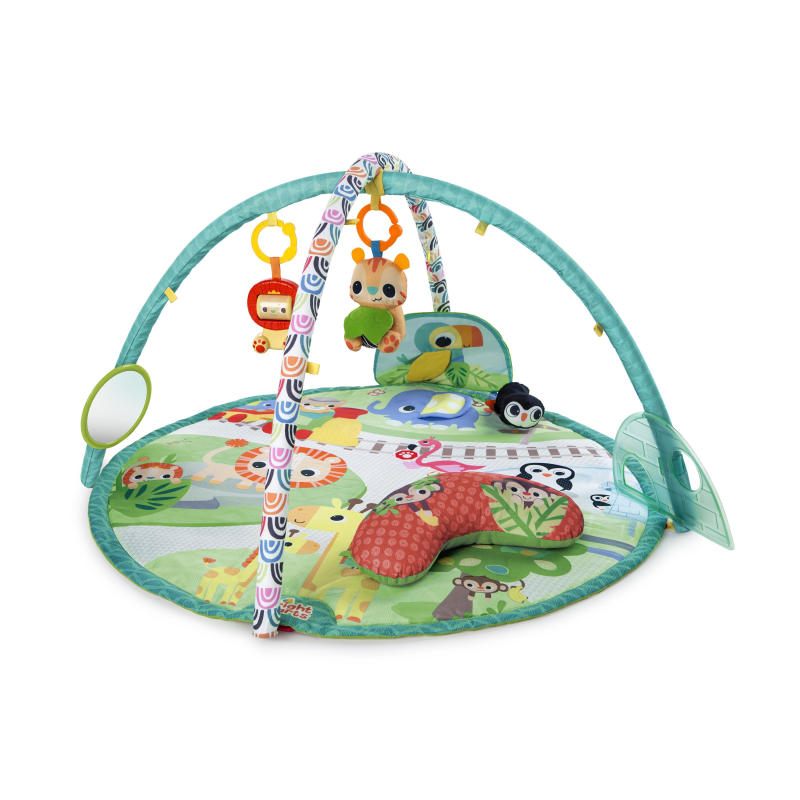 Peek-A-Zoo Activity Gym™