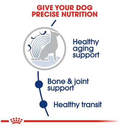 Large Aging 8+ Dry Dog Food