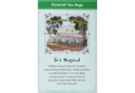 Back panel of Charleston Tea Green Tea with Mint Box of tea