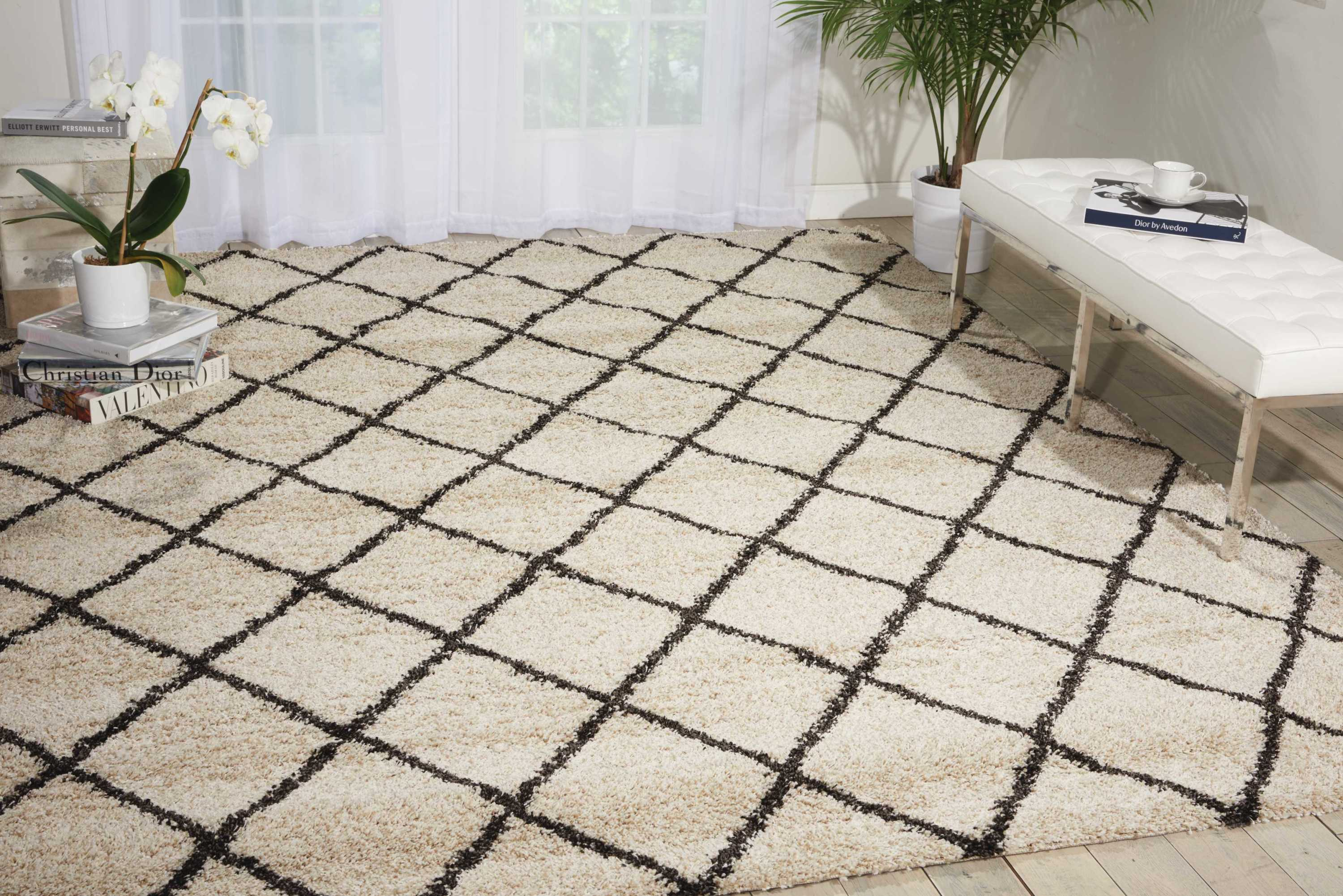 Nourison Brisbane Bri08 White And Black 5'X7'  Area Rug