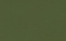 Crescent Sierra Olive 40x60