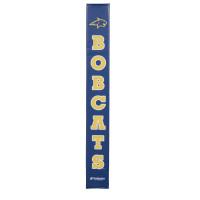 Montana State Bobcats thumbnail 2