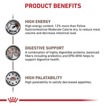 Gastrointestinal Dry Cat Food - Formerly Gastrointestinal High Energy