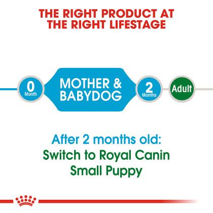 Small Starter Mother And Babydog Dry Dog Food