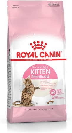Kitten Sterilised