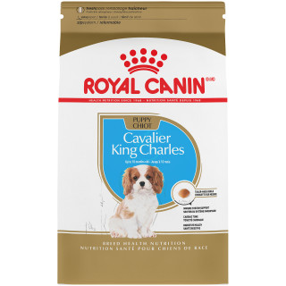Cavalier King Charles Puppy Dry Dog Food