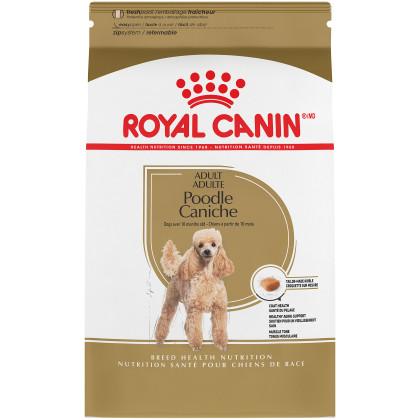 Poodle Adult Dry Dog Food