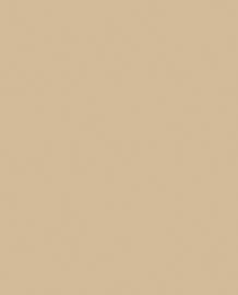 Bainbridge Camel 32