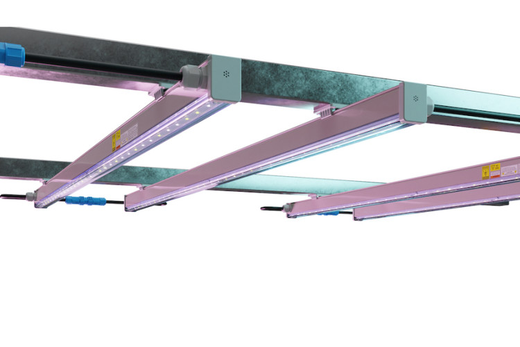 Arize Lynk LED Horticulture Grow Light by GE Current, a Daintree Company