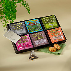 Charleston Tea Sampler