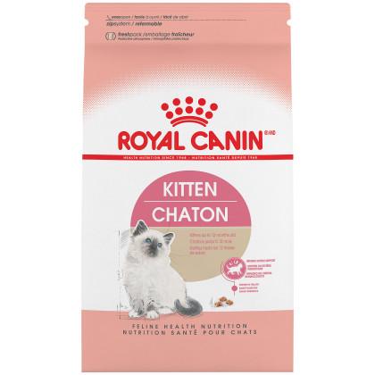 Kitten Dry Cat Food