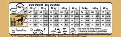 Golden Retriever Adult feeding guide