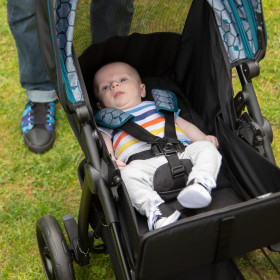 Clover Travel System with LiteMax Infant Car Seat
